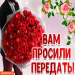 Открытка большой букет красных роз