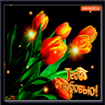 Букет тюльпанов с любовью