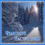 Открытка чудесного настроения зимой