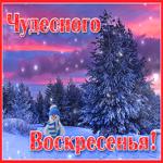 Открытка чудесного воскресенья зимой