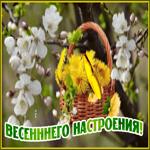 Открытка для настроения с весной
