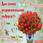 Открытка для очаровательной подруги с тюльпанами