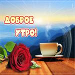Открытка доброе утро с красной розой