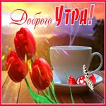 Открытка доброе утро с красными тюльпанами