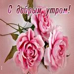 Открытка доброе утро с розовыми розами