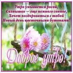 Открытка доброе утро с розовыми цветами
