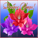 Открытка доброе утро с восхитительными цветами