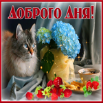 Открытка добрый день с кошкой