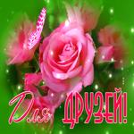Открытка друзьям с розами