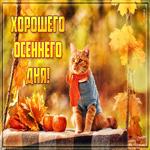 Открытка хорошего осеннего дня с котом