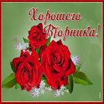 Открытка хорошего вторника с розами