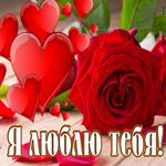 Открытка люблю с алой розой