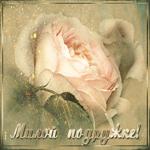 Открытка подруге с розой