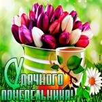 Открытка понедельник с тюльпанами