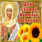 Поздравление С днём святой Натальи Овсяницы