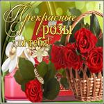 Открытка прекрасные розы