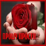 Открытка прости с розой