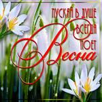 Открытка пусть в душе поет весна