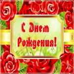 Открытка с днем рождения женщине розы