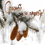 Открытка спасибо за дружбу, со снегом