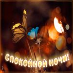 Открытка спокойной ночи с бабочкой