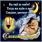 Открытка спокойной ночи с текстом