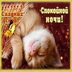 Открытка спокойной ночи со спящим котиком