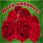 Открытка великолепные розы