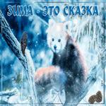 Открытки с зимой с природой