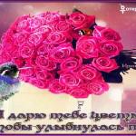 Плейкаст дарю цветы