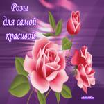 Плейкаст женщине красивые розы