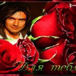 Плейкаст красные розы
