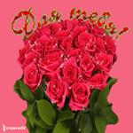 Плейкаст красивые розы