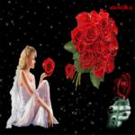 Плейкаст розы