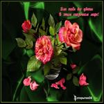 Плейкаст все цветы для тебя