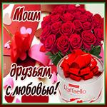 Плейкаст красивые цветы друзьям