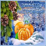 Плейкаст про зиму