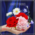 Розы для души
