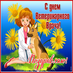 Поздравительная открытка День ветеринарного работника