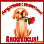 Поздравляю С Днём имени Анастасия