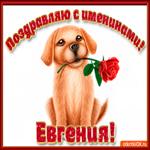 Поздравляю С Днём имени Евгения