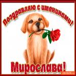 Поздравляю С Днём имени Мирослава