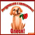 Поздравляю С Днём имени Олеся