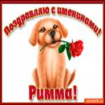 Поздравляю С Днём имени Римма