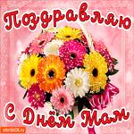 Поздравляю с днём мам