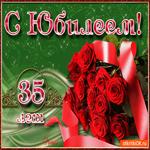 Поздравляю С Днём Рождения 35 лет
