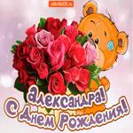 Поздравляю с днём рождения Александра