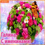 Поздравляю С именинами Галина