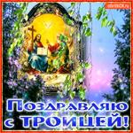 Поздравляю с Троицей Святой
