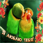 Позитивная открытка я люблю тебя